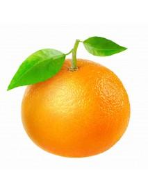 Orange Essential Oil eļļa